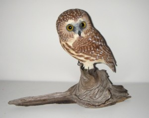 Saw Whet Owl carving